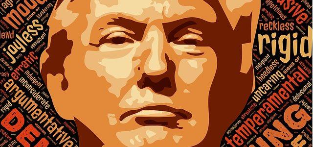 Warum Donald Trump?