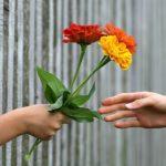 Die Kunst des Schenkens | Im Herzen schenken | SOLIA CHANNELING